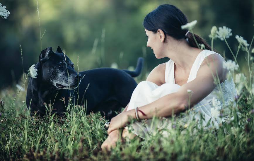 pranic energy healing per gli animali